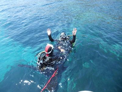 plongée six fours les plages Baptême de plongée ile des Embiez avec bellevue plongée
